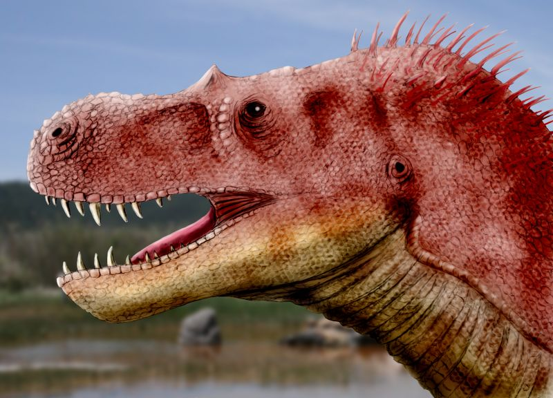 <i>Teratophoneus</i>, a cousin of <i>Tyrannosaurus</i>, was the largest predatory dinosaur in southern Utah at that time. Image by Nobu Tamura, CC-BY-SA 3.0.